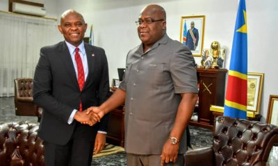 DRC: Tony Elumelu's three messages to President Tshisekedi