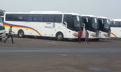 Kinshasa: Transco is given 42 new buses by Zhong Tong!