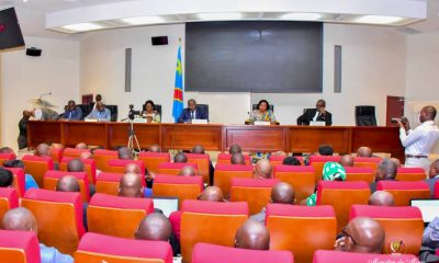 DRC: Mines, agents equipped on the mineral supply chain in conflict areas